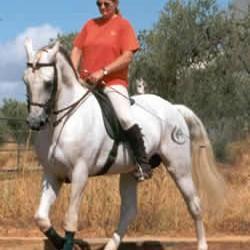 Johanna Beattie Batista Royal School of Equestrian Art Jerez