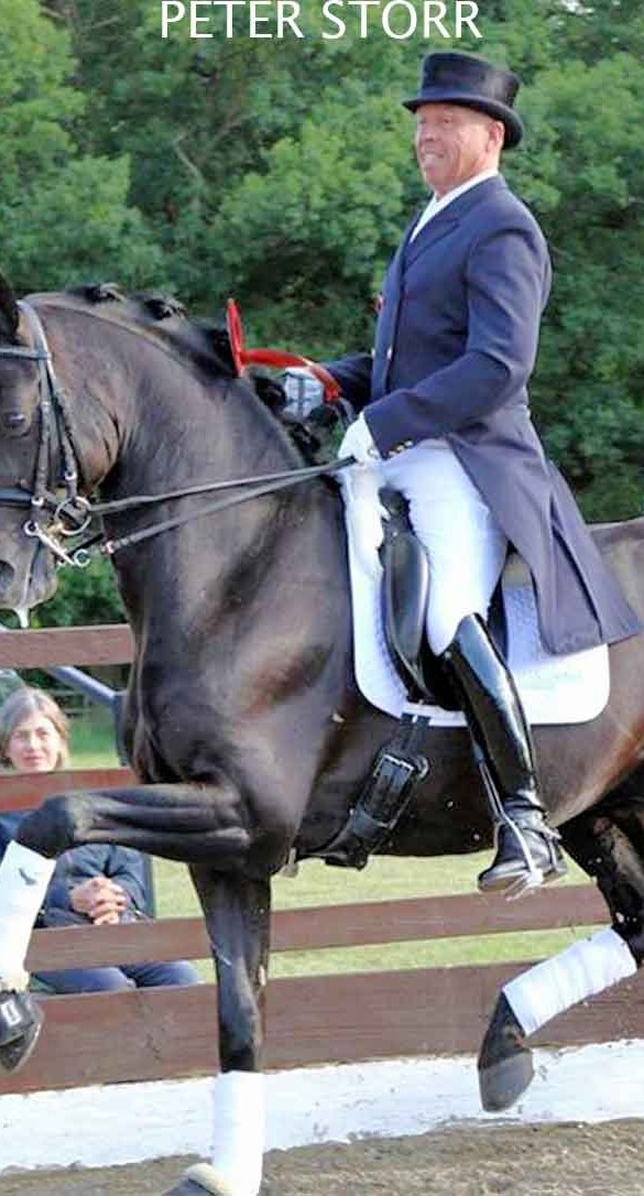 Fin Jopson worked as rider for British Olympic Dressage rider Peter Storr