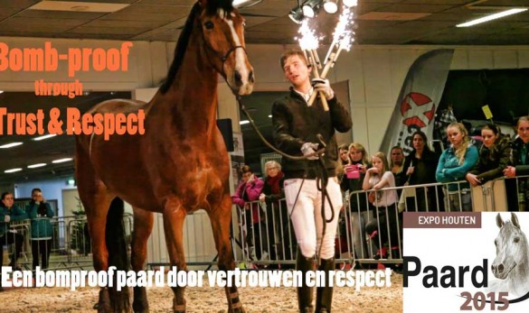 Fin Jopson horse of the year show